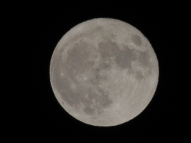 La lune de Patrick Martignole