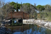 Jean Martin - Palavas Le Parc du Levant