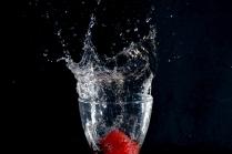 "Atelier ""Fruits plongeants"" - William Clap"