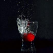 "Atelier ""Fruits plongeant"" - PAtricia"