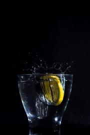 """Atelier """"Fruits plongeants"""" - Sébastien Boulesteix"""