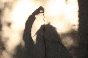 "Atelier ""Jeux d'ombres"" - Caroline Geolle"
