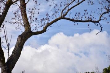 """Atelier """"composer avec les nuages"""" - William Clap"""